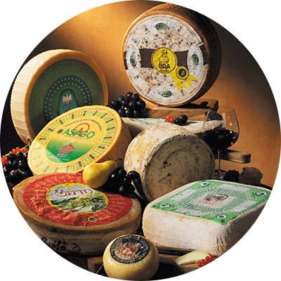 P.D.O cheeses of Italy